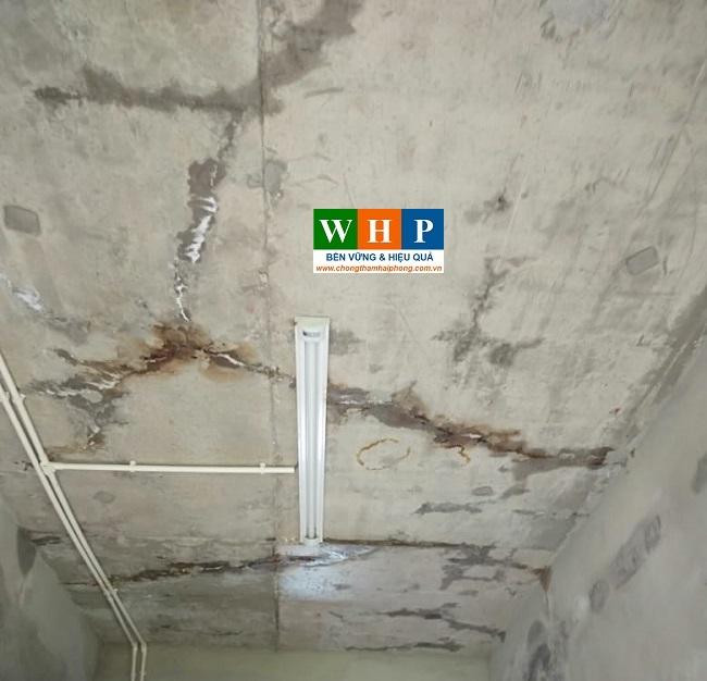 Khảo sát Thi công sửa chữa chống thấm