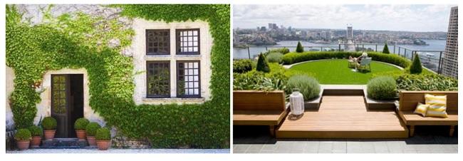 Áp dụng giải pháp sân vườn trên cao